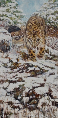 Snow Patrol by Vanishing Visions by                     Michelle McCune, DVM