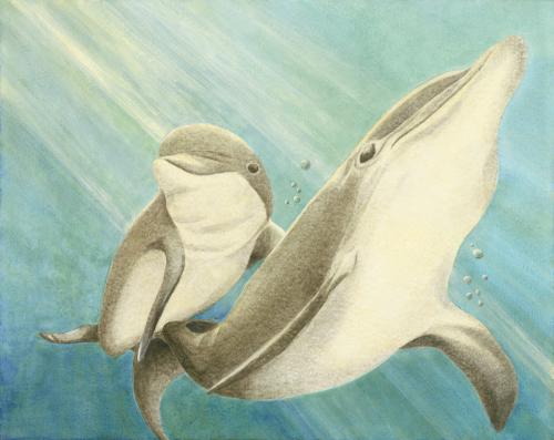 Dolphin Mother & Calf 10 by Marie Maurgo Cohorn Art