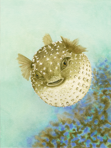 Puffer Prowess 18