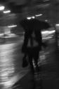 Le Parapluie de la Nuit
