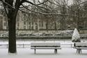 Jardin de Notre Dame