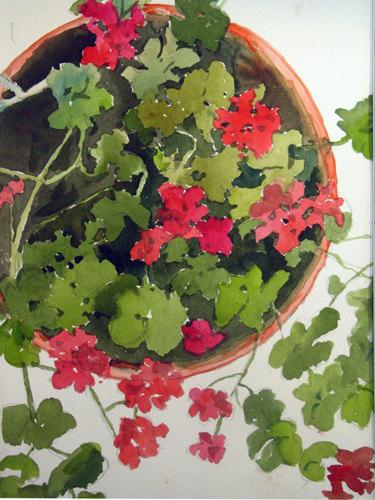 Red Geranium Pot
