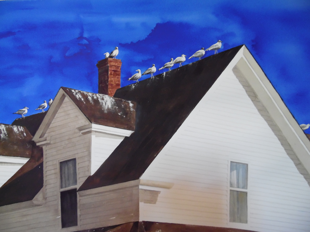 Gulls On a Roof, Lubec, Maine (large view)