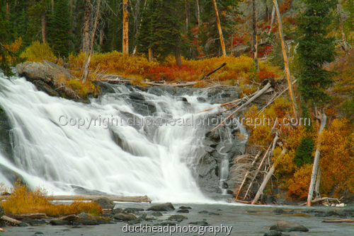 #68 Lewis Falls 1, Yellowstone National Park by Duckhead Photography