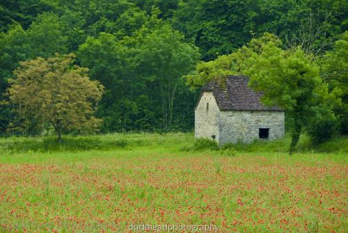 dix jours France 2008