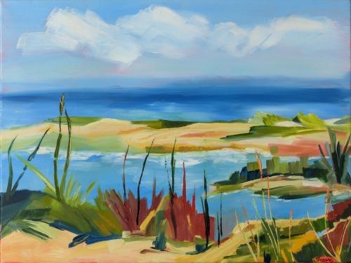Wellfleet Beach