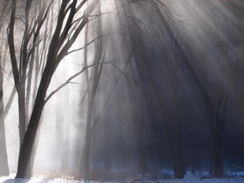 sunstream by mark j smith