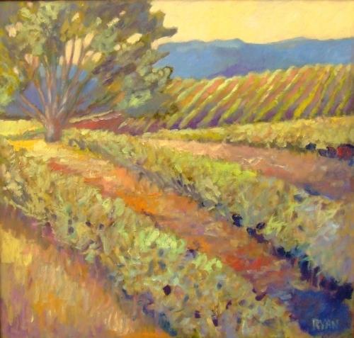 Sonoma by M.S.Ryan Fine Arts