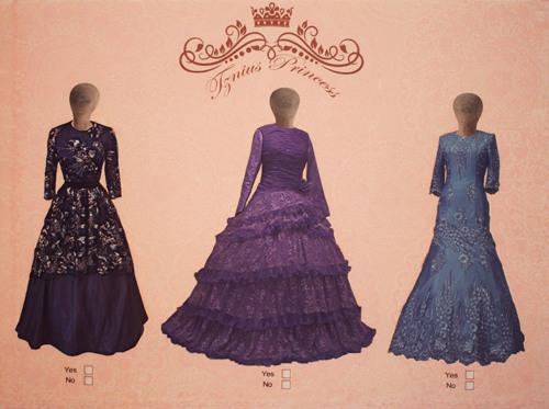 Tznius Princess (Tzniut Series)