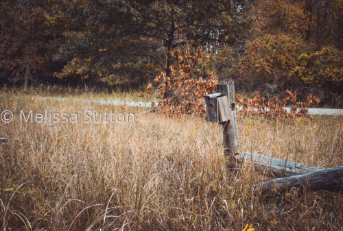 Michigan Country in the Fall by Melissa Sutton