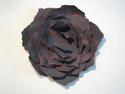 Black Rose (thumbnail)