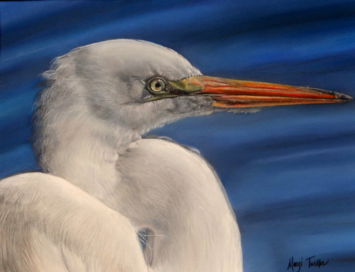 A Great White by Margi Tucker