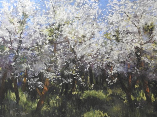 Spring Blooms (large view)