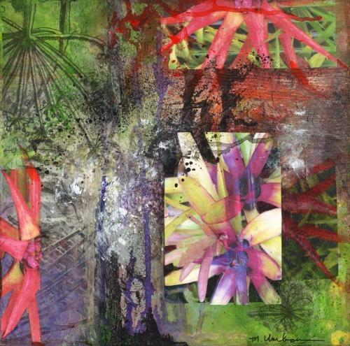 Bromeliads by marsha umbour