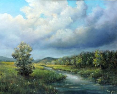 River landscape spring after the rain