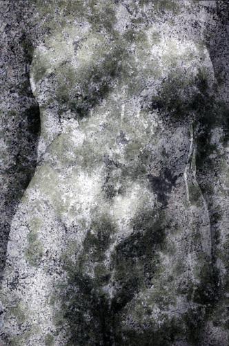 Torso/Lichen