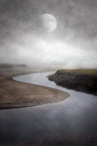 Tidal Inlet