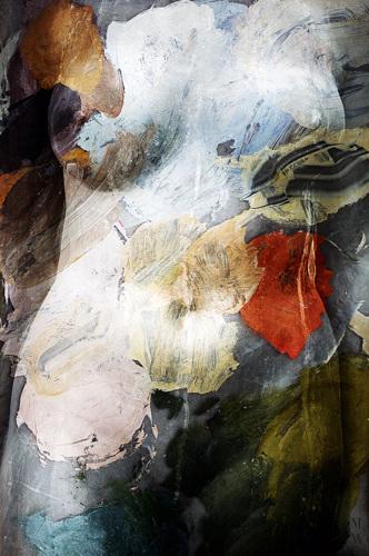 Torso/Palette