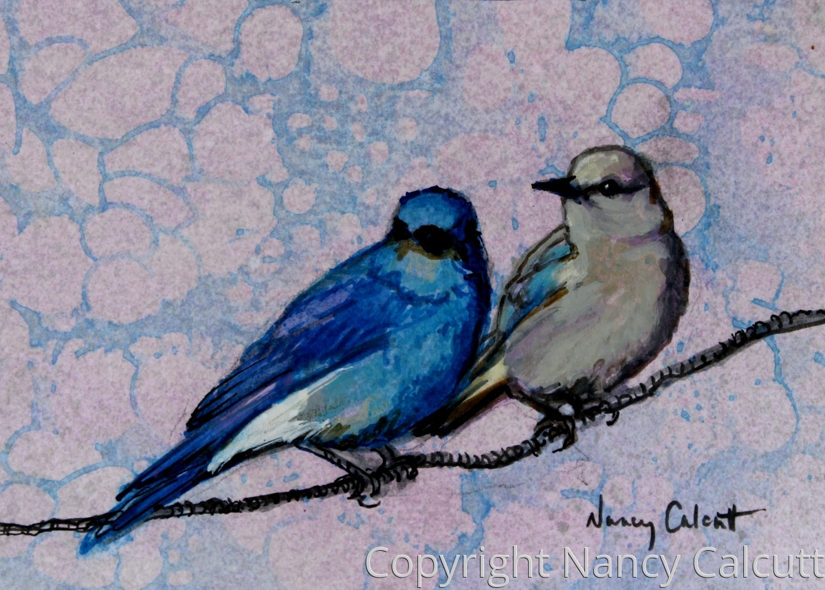Bluebird Couple (large view)