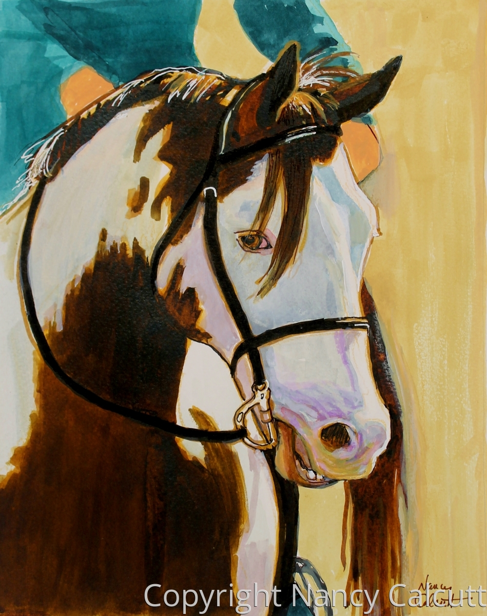 Painted Pinto (large view)