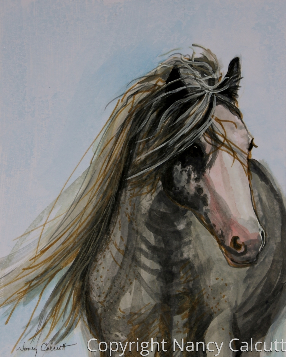 Wild Horse (large view)