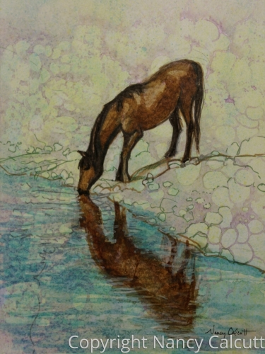 Horse with Reflection