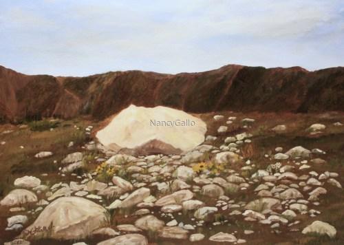 Montana Rocks