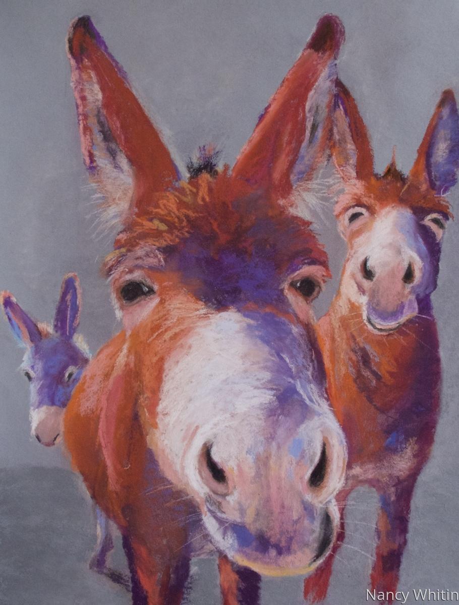 Donkey Detente (large view)