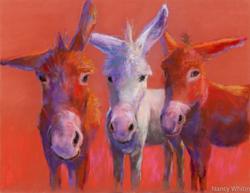 Scout, Zoey, and Banjo by Nancy R. M. Whitin