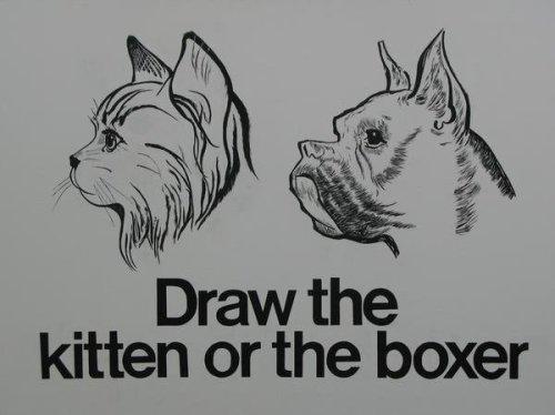 Draw My Pets
