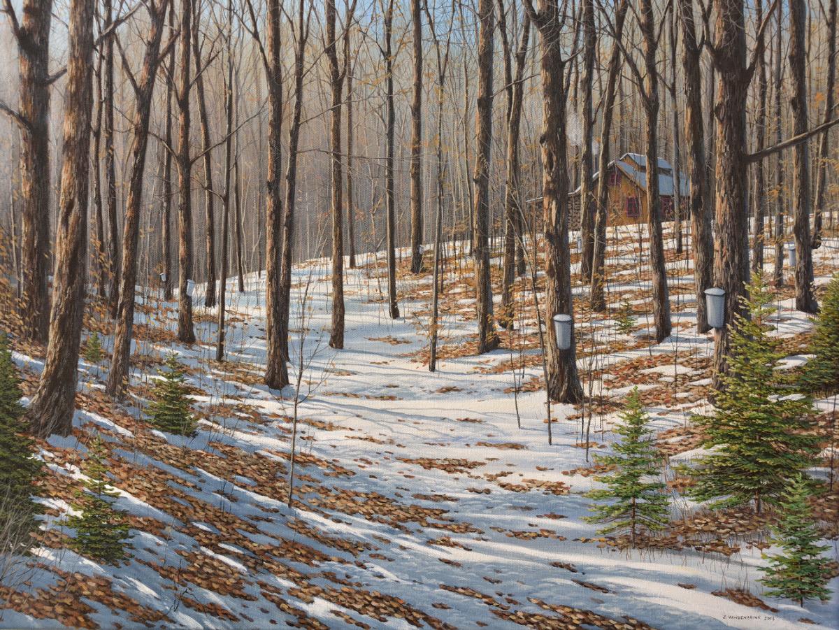 Painting Maple Woods Original Art By Jake Vandenbrink