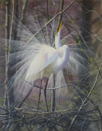 Dancing Egret by Jan Sasser