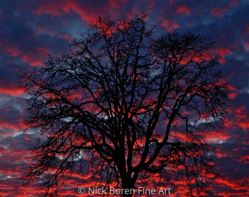 Lake Oswego Sunset