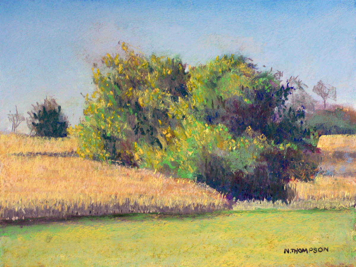 Edge of the Field (large view)