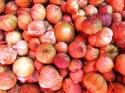 Therese Halscheid: Tomatillos, Mexican Market (thumbnail)