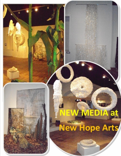 New Hope New Media Image 1 by Carol Cruickshanks (large view)