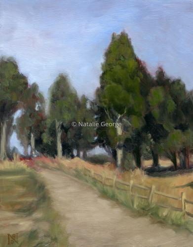 Price Park Cedars