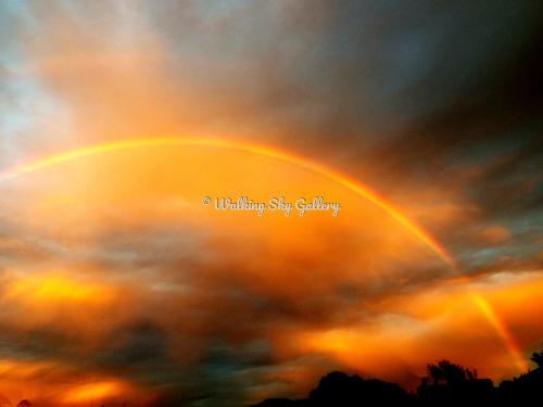 Magical Rainbow