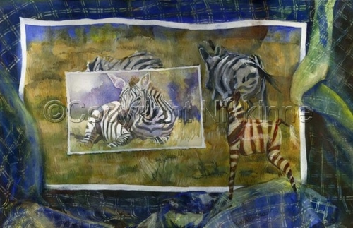 Safari of Lost Photos - Zebras