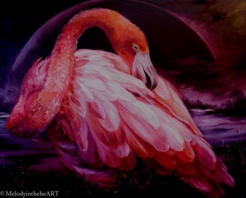 Pink dreams.