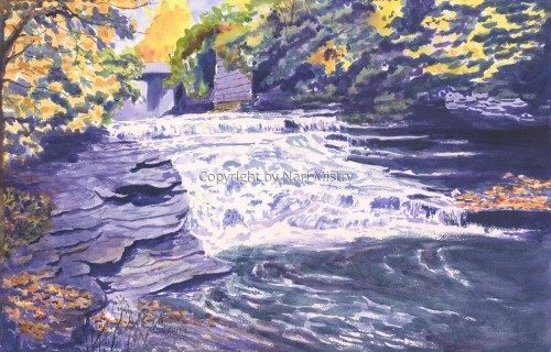 Brooktondale Falls