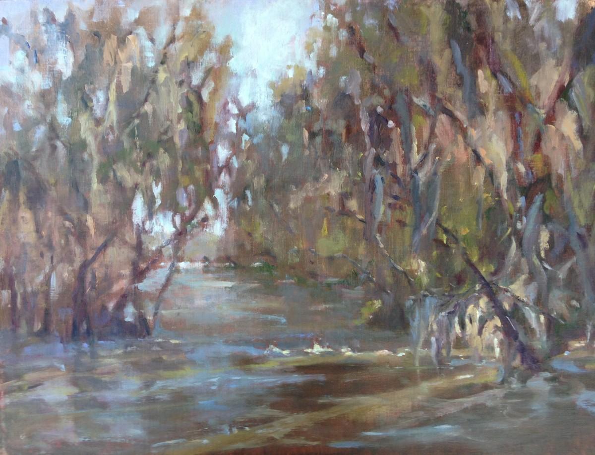 Saluda River Passage (large view)
