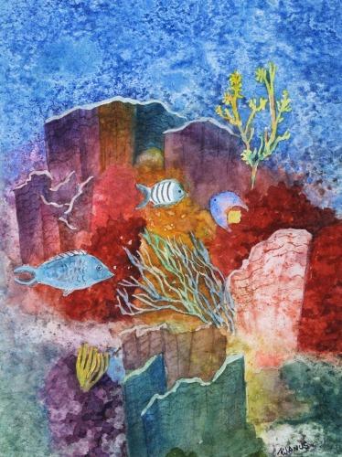 Undersea Walls of Color
