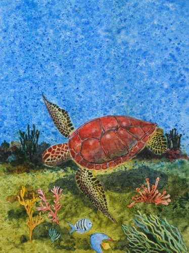 Red Turtle Gliding