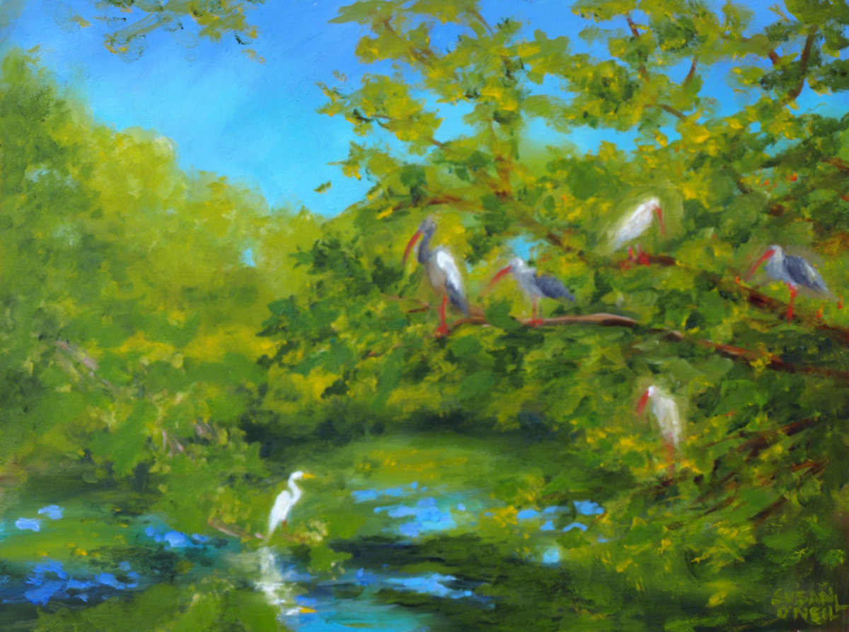 Egrets and Ibis at Turtle Pond (large view)