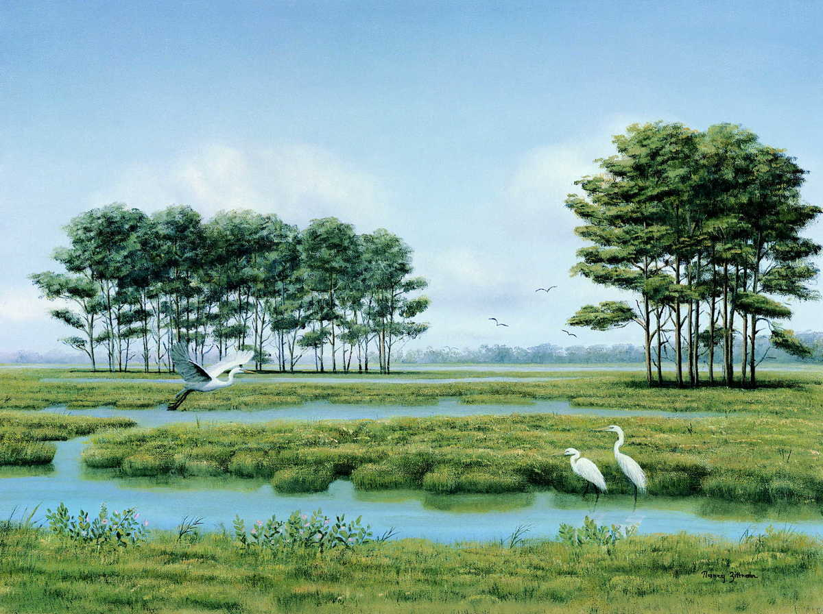 Egrets at Assateague (large view)