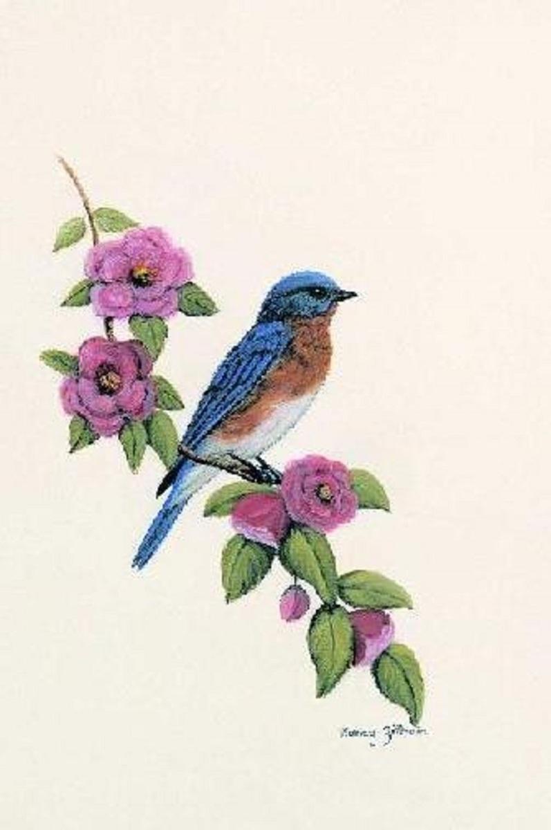 Bluebird (large view)