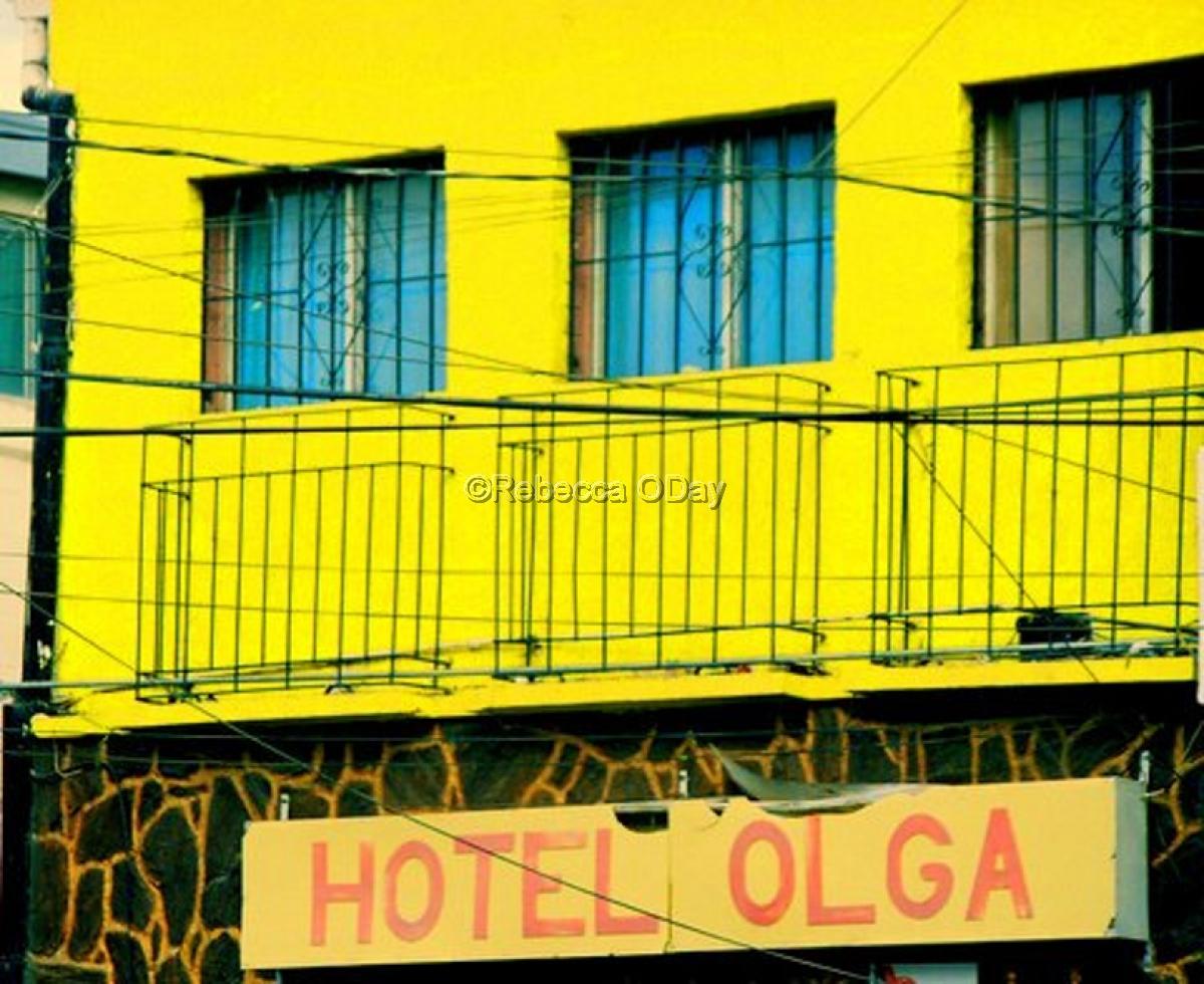 HOTEL OLGA (large view)
