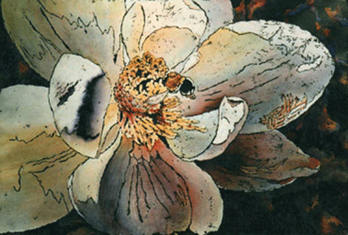 Bee a Magnolia by Ouachita River Art Gallery (The River Gallery)