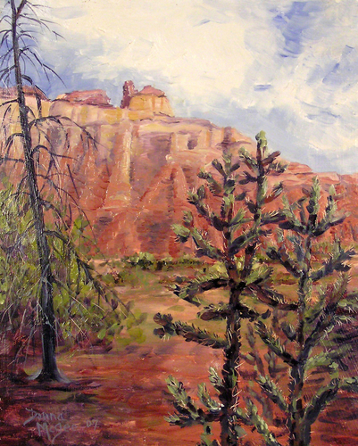 Near Echo Amphitheatre, Ghost Ranch (large view)